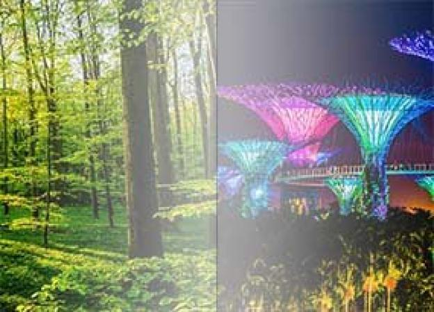 Natürliches Licht und künstliches Licht