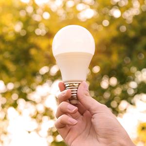 LED-Lampe vor grünem Hintergrund