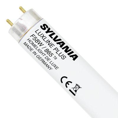 Sylvania G13 Fassung